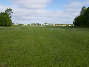 Looking north down the grass runway